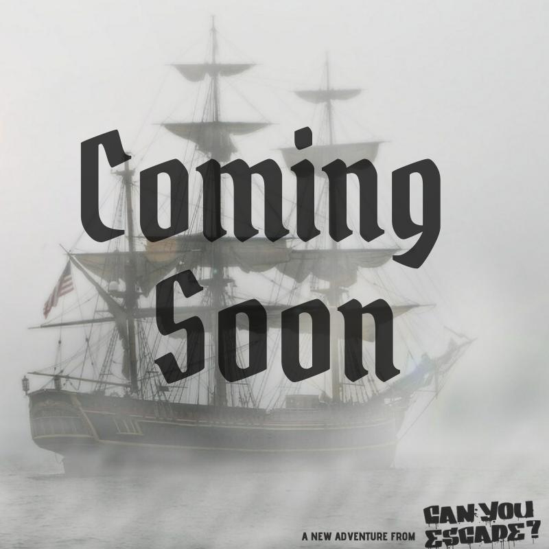 Pirate Ship w logo